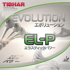 Guma Tibhar Evolution EL-P