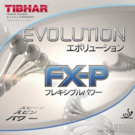 Guma Tibhar Evolution FX-P