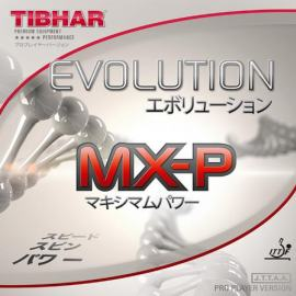Guma Tibhar Evolution MX-P